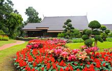 Doi Tung Palace, Chiang Rai Thailand