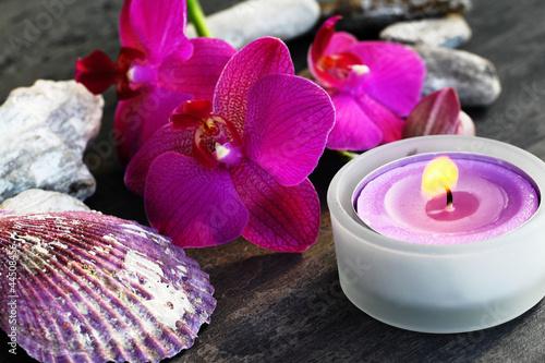 Plissee mit Motiv - Orchideenblüte mit Teelicht