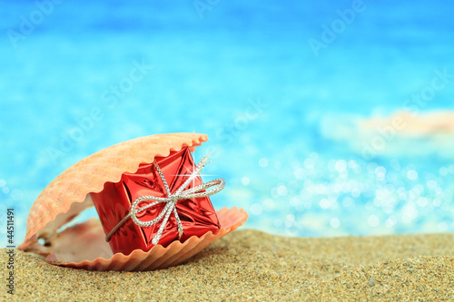 Foto-Schiebegardine Komplettsystem - Gift box in a sea shell on the beach