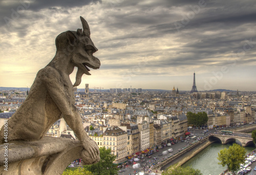 Gargoyle on Notre Dame de Paris Wallpaper Mural