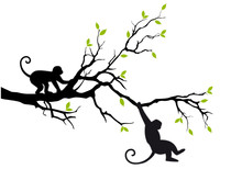 Monkeys On Tree, Vector