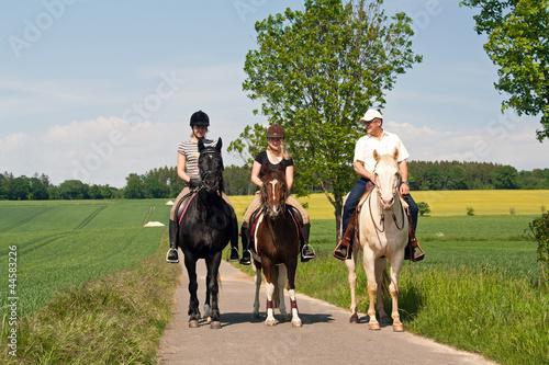 Papiers peints Equitation Die Drei 2