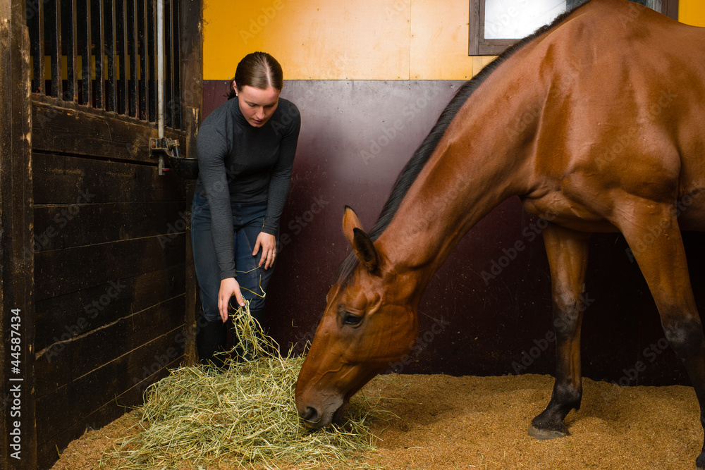 Fototapety, obrazy: Woman feeding horse