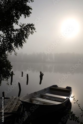 Foggy lake mystic silence