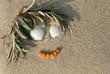Sanddorn-Gesicht im Strandsand, Küste, symbolisch, plakativ