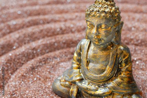 Doppelrollo mit Motiv - Buddhafigur im Zengarten (von Sonja Birkelbach)