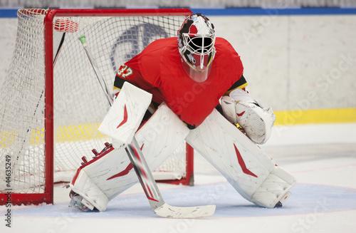 Fotomural Ice Hockey Goalie