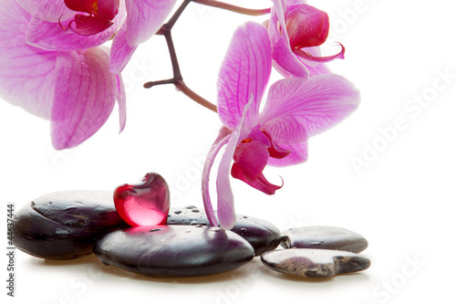 Plissee mit Motiv - Massage Stones with Orchid