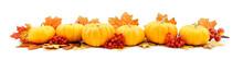 Horizontal Autumn Edge Border Of Pumpkins And Leaves
