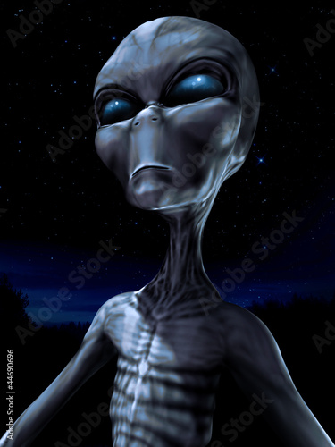 Fotografie, Obraz  Alien creature in a forest at night