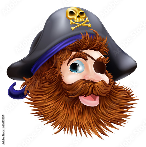 Photo Stands Pirates Pirate face illustration