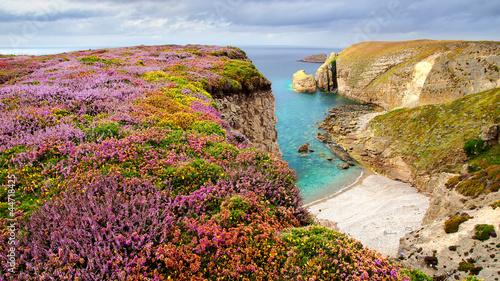 Fotografie, Obraz Cap Frehel.  Brittany, France