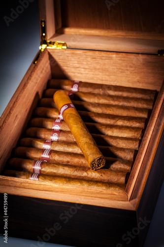 Photo  Cigars in humidor