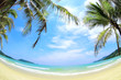 Tropical beach with coconut palms and white sand