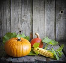 Autumn Pumpkins And Corn Vinta...