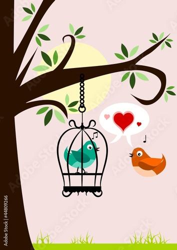 Foto op Canvas Vogels in kooien Birds in love
