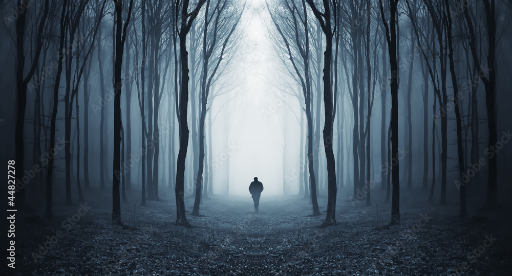 Fototapety, obrazy: man in a dark forest