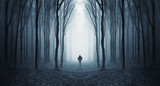 Fototapeta Las - man in a dark forest