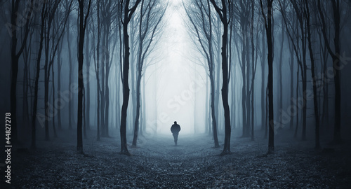 Poster Grijze traf. man in a dark forest