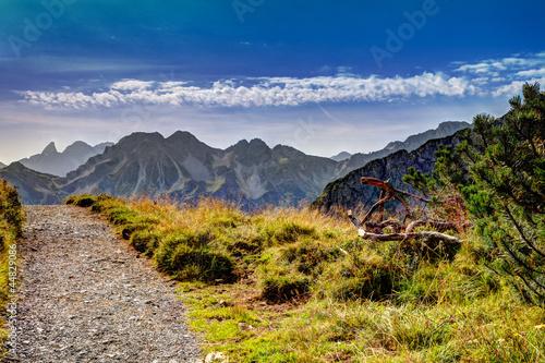 Fototapeta góry gorska-sciezka