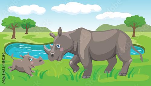 Poster de jardin Zoo rhinos