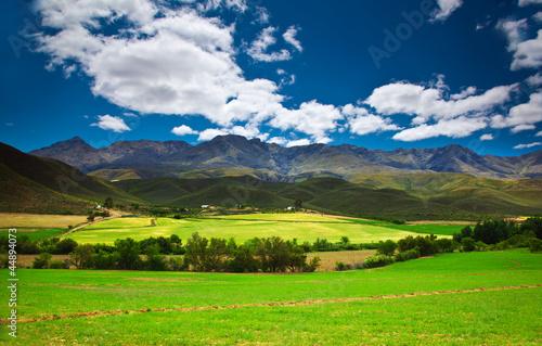 Poster Afrique du Sud South African landscape
