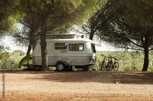 Cuadros en Lienzo Small white caravan through the trees