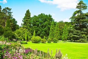 Fototapeta Ogrody English garden
