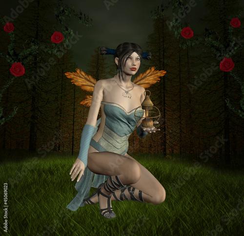 La pose en embrasure Fées, elfes Into the wood