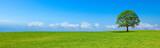 Panoramiczny krajobraz wiejski B