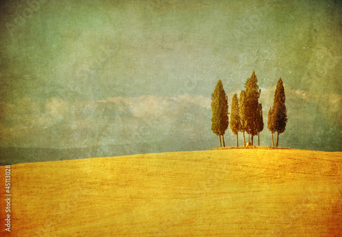 Photo sur Toile Retro vintage tuscan landscape