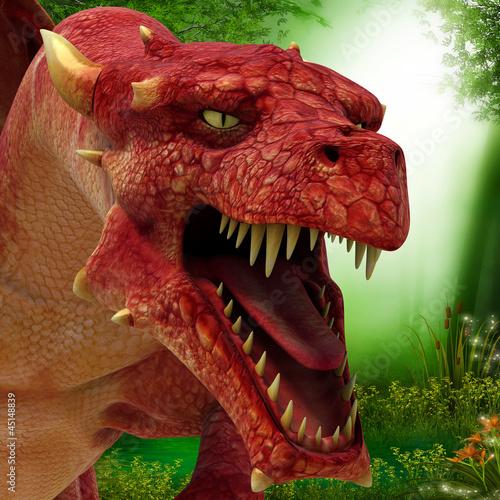 florest dragon ahead