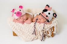Fraternal Twin Newborn Baby Gi...