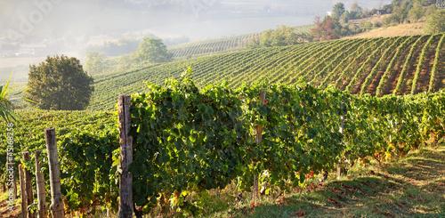 Fotografia  Astigiano, Piedmont, Italy: landscape (Costigliole d'Asti)
