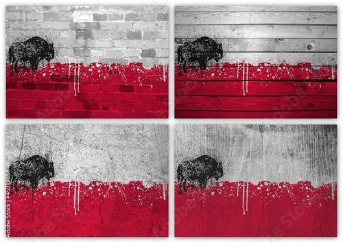 Fényképezés  Poland flag collage