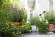 canvas print picture - balkonpflanzen