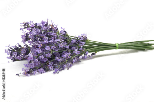 Lavender - 45235448