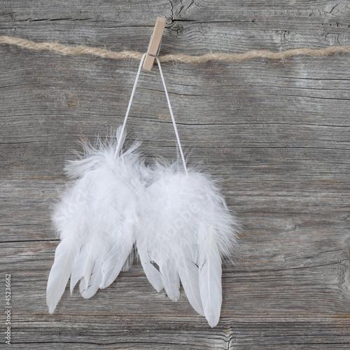 Fotografia, Obraz  Angel wings