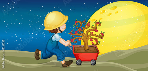 Cadres-photo bureau Cosmos a boy and trolley with plant
