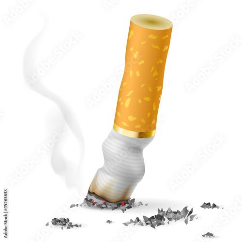Fotografia, Obraz  Realistic cigarette butt
