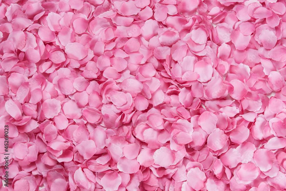 Fototapety, obrazy: Petali di rosa