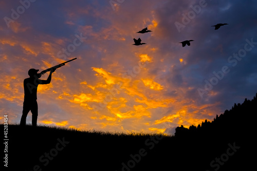 Foto op Canvas Jacht Bird Hunting Silhouette