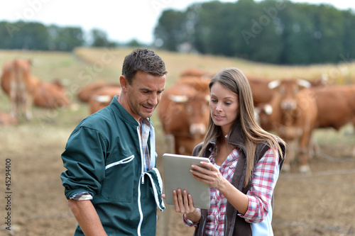 Fotografía  Farmer and woman in cow field using tablet