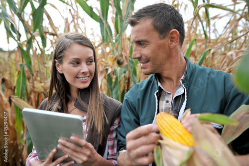 Farmers in cornfield using electronic tablet Canvas Print