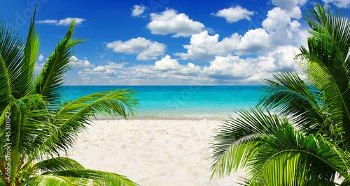 Türaufkleber Tropical strand sea
