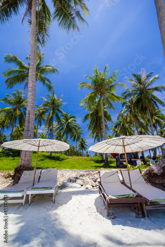 white umbrella and chairs under coconut tree buy this stock photo