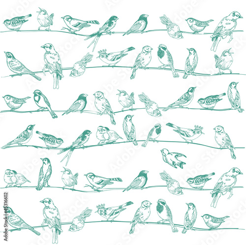 fototapeta na ścianę Birds Seamless Background - for design and scrapbook - in vector