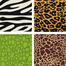 Set Of 4 Animal Skin Patterns