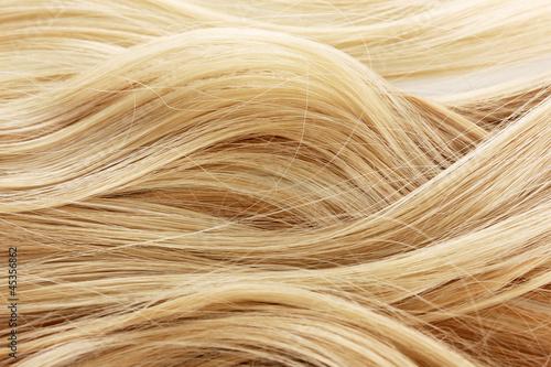 Fotografie, Obraz  Curly blond hair background