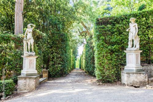 In de dag Olijf Boboli Gardens